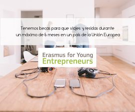 erasmus-young-entrepreneurs_fyg-consultores-blog